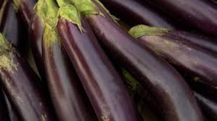 çürük patlıcan görmek